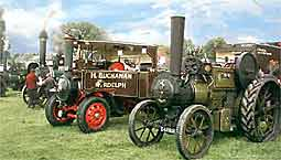 Traction Engines and Steamers at Lingfield